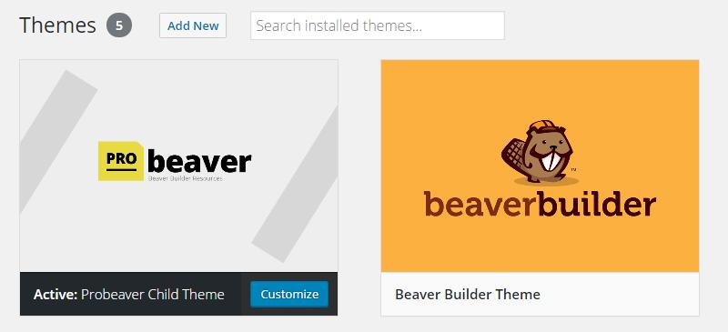 Custom screenshot image of beaver builder child theme