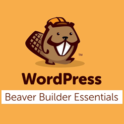 Beaver Course by Adam at wpcrafter