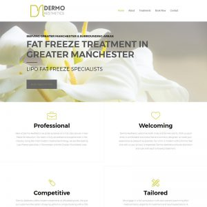 dermo aesthetics website