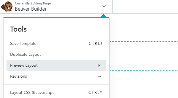 Preview mode in Beaver Builder
