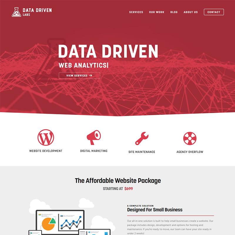 datadrivenlabs website